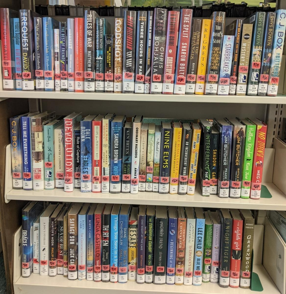 New Adult Fiction Shelf Browse B