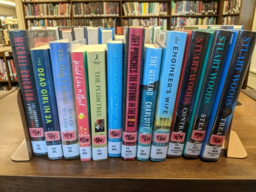 New Adult Fiction Shelf Browse WI