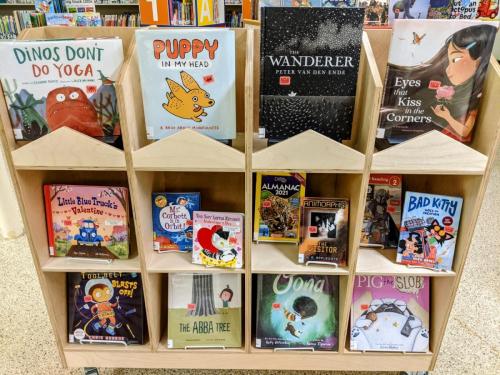 New Assorted Children's Books January 2021