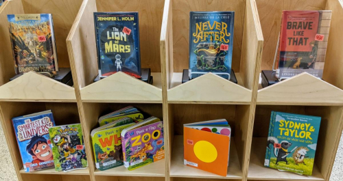 New Assorted Children's Books January 2021 (1)