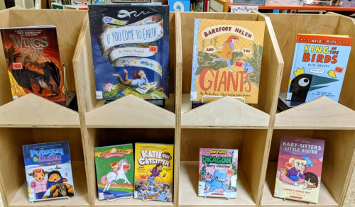 New Assorted Children's Books January 2021 (2)