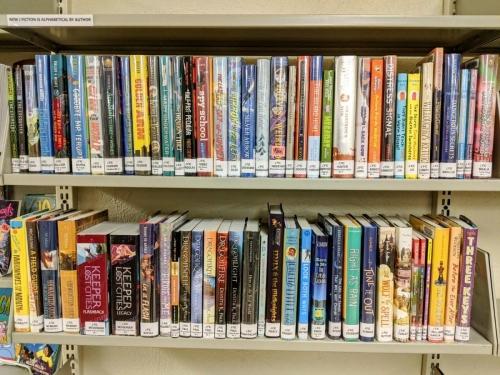 New J Fiction shelf Jan 2021