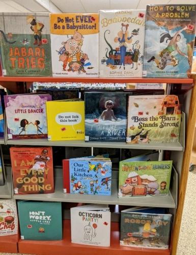 New J Picture Books shelf Jan 2021 (4)